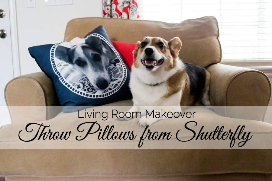 Living Room Makeover: Throw Pillows