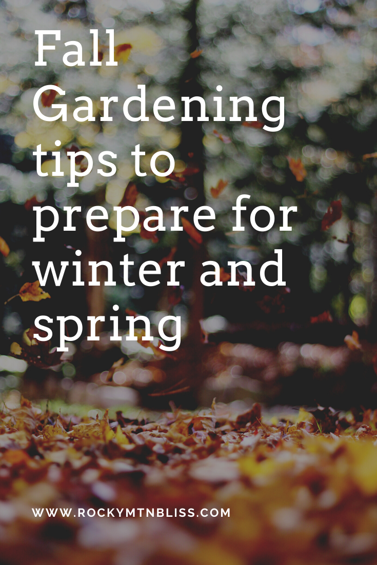 Fall Gardening Tips To Prepare Your Yard For Winter Rocky
